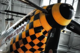 Upupa Epops - P-51 Mustang