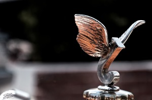 Wings - 1926 Jewett Ornament